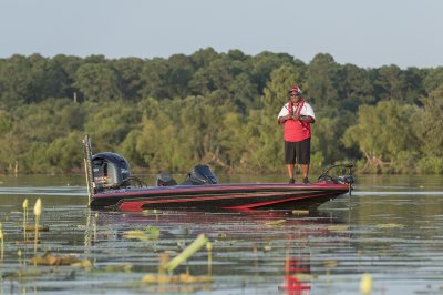 zx225 fishes great in lily pads
